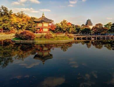 Güney Kore'ye Gideceklere Tavsiyeler